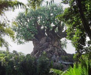 Animal Kingsom Tree of Life