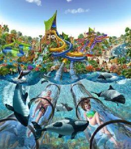 SeaWorld Aquatica Art