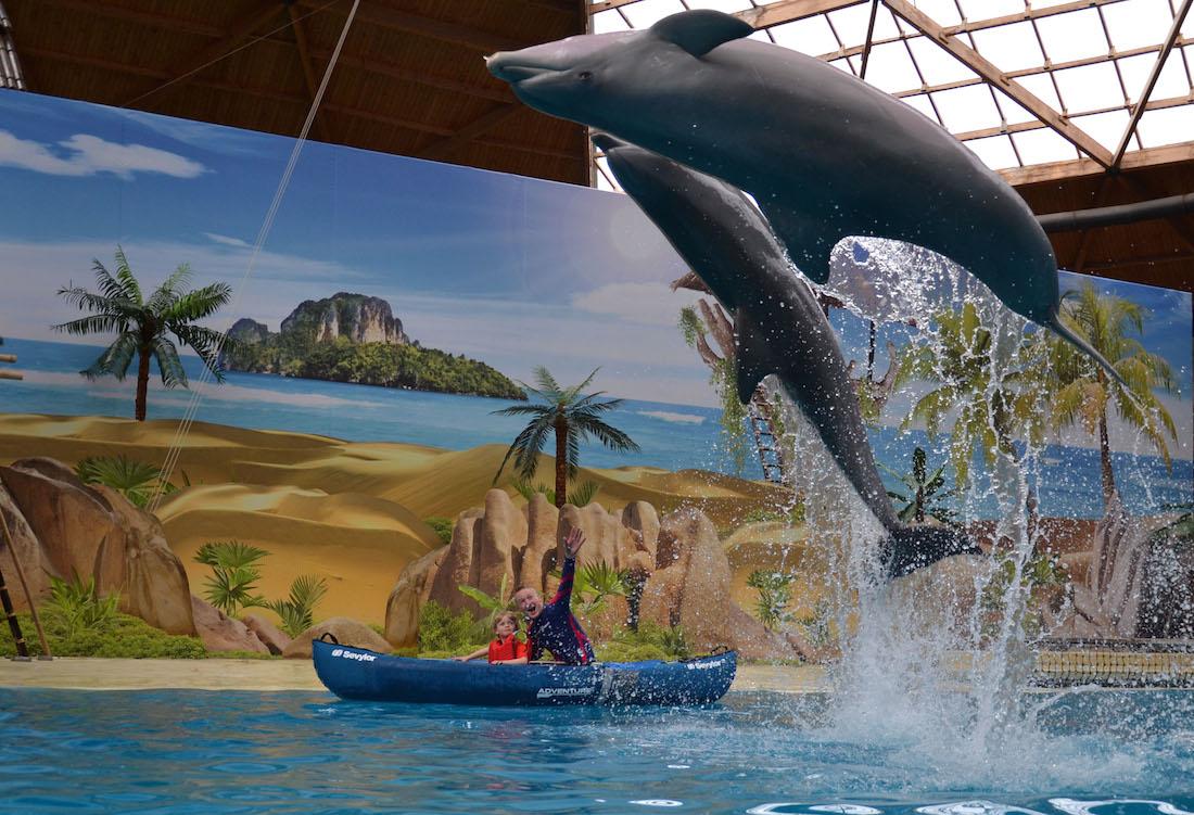 Dolfijnenshow in Boudewijn Seapark