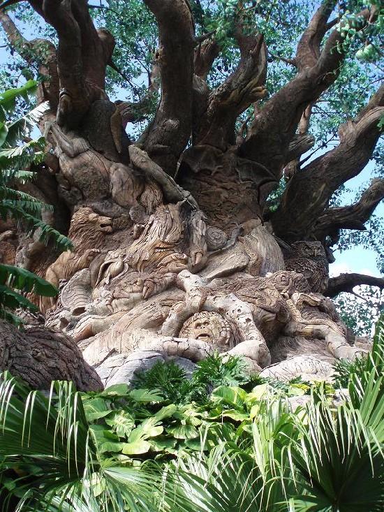 Detail Tree of Life