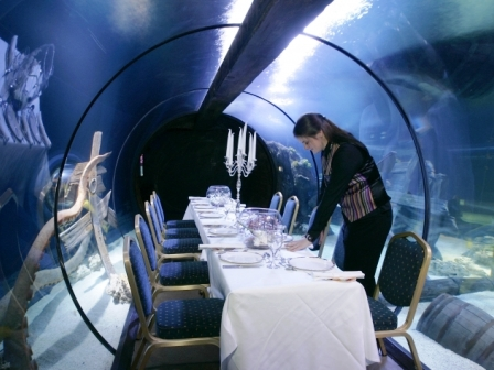 Dineren in Sharkbait Reef in Alton Towers