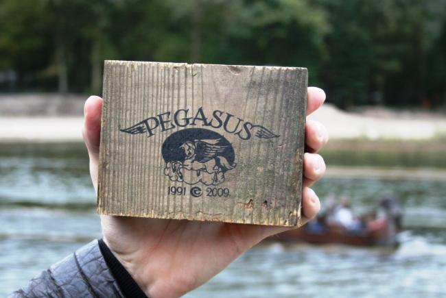 Eft Pegasus blokje hout 09PP