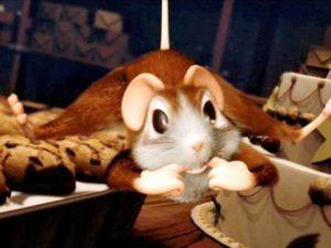 Maus au chocolat