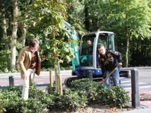 Philip en Gino planten de kastanjeboom bij Duinrell