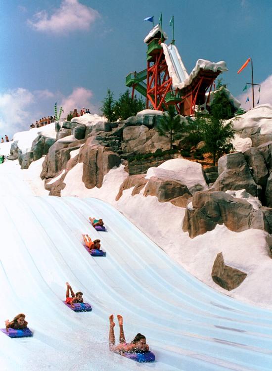Tobbogan Race in Blizzard Beach - Foto: (c) Disney