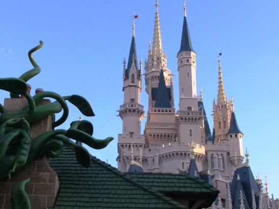 Het kasteel in het Magic Kingdom in Florida - Foto: (c) Adri van Esch, Parkplanet