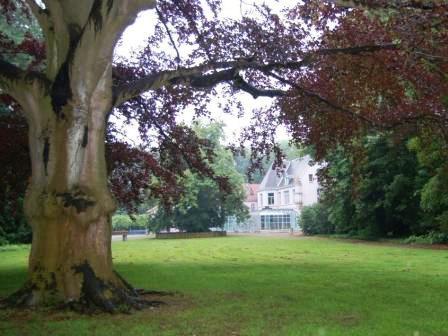 lvo boom en kasteel ad van kessel