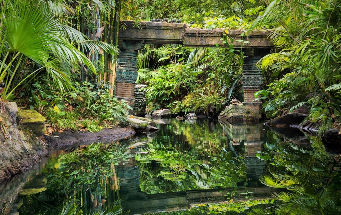 Landscaping: Jungle Cruise in Disneyland in Anaheim - Foto: (c) Disney