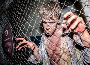 The Walking Dead Breakout in Movie Park Germany