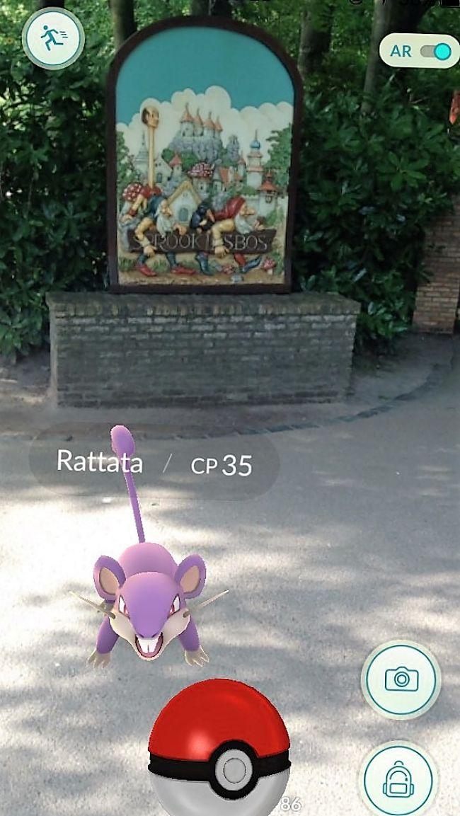 Pokémon Go in de Efteling