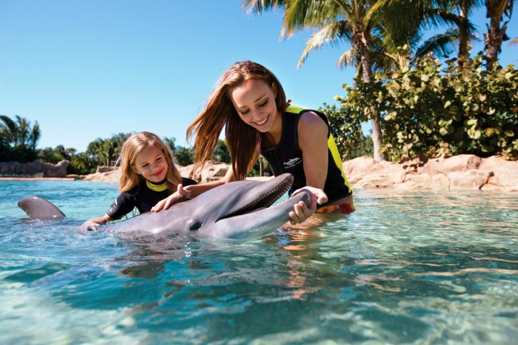Seaworld discovery cove interactie 15pers