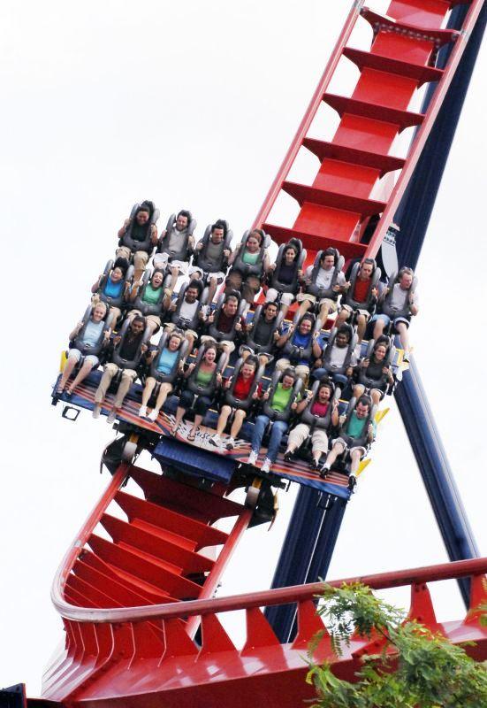 SheiKra in Busch Gardens in Tampa (Florida)