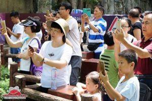 ThemeparkGuy Smartphones Beeld 17pers