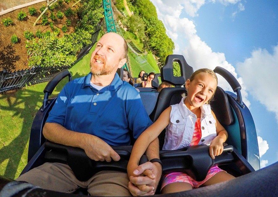 Cobra's Curse in Busch Gardens Tampa Bay - Foto: SeaWorld Parks & Entertainment