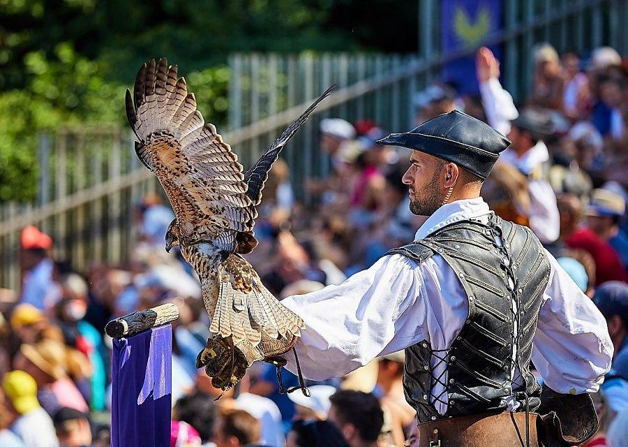Roofvogelshow in Puy du Fou - Foto: Stephane Audran