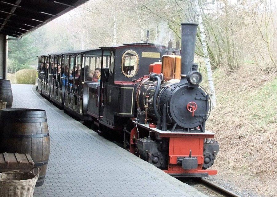 De stoomtrein komt aan op Station de Oost in de Efteling – Foto: © Adri van Esch