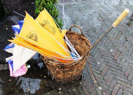 Ondanks de regen toch een leuk dagje Efteling - Foto: © Adri van Esch
