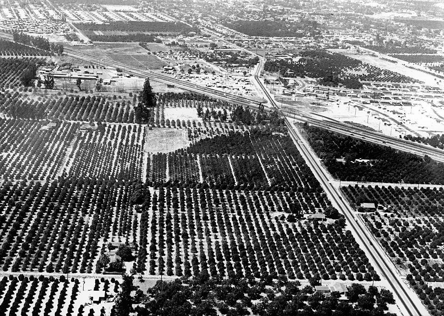 De 65 hectare grond die Walt in Anaheim kocht lag aan snelweg Interstate 5